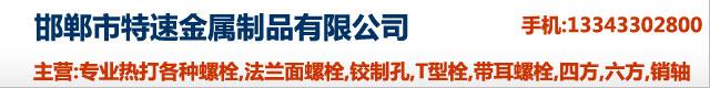 邯郸市特速金属制品有限公司